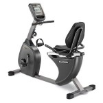 Horizon Fitness RC 30 Recumbent Exercise Bike