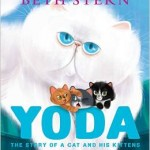 YodaThe Story of a Cat and His Kittens Hardcover