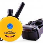 Educator E-Collar Dog Trainer