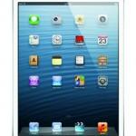 Apple iPad mini MD53