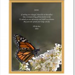 Personalized Retirement Gift. Butterfly Photo with