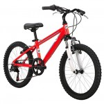 Diamondback Bicycles Youth 2015 Octane 20 Complete Hard Tail Mountain Bike, 20-Inch