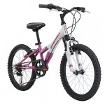 Diamondback Bicycles Youth Girls 2015 Tess 20 Complete Hard Tail Mountain Bike, 20-Inch Wheels