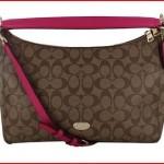 Coach EastWest Celeste Women's Hobo Handbag Bag