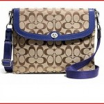 Coach Park Signature Tablet Case and Crossbody Bag