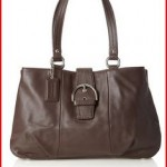 Coach Soho Leather Carryall