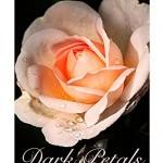 Dark Petals