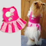 Cute Pet Dog Clothing
