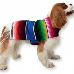 Dog Clothes - Handmade Dog