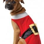 Rasta Imposta Santa Dog Costume