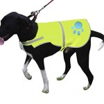 Reflective Dog Vest Large